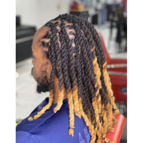 Two-stand Twists With Blonde Highlights dreadlock styles for men