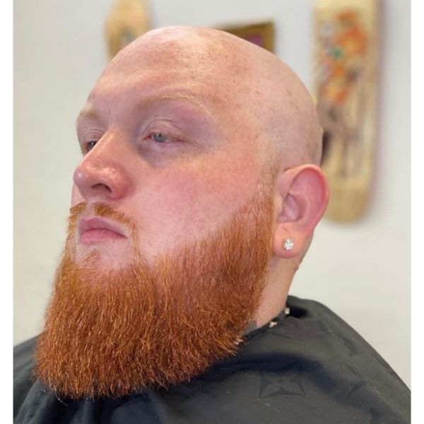 Bald Fade with Long Ginger Beard