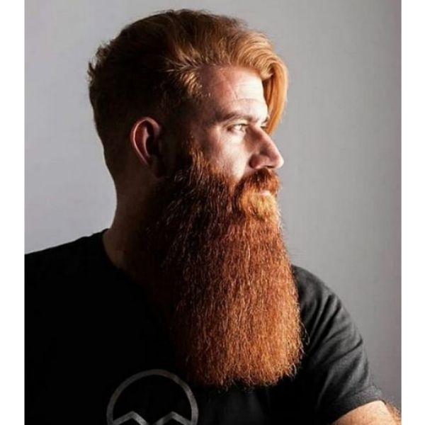 Extra Long Full Ginger Beard with Mustache and Falling Sides