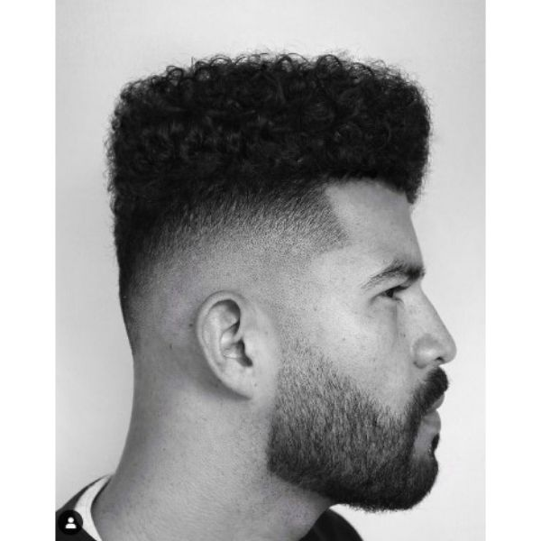 Hi-top With Curly Top